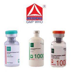 Vaccine gia cầm