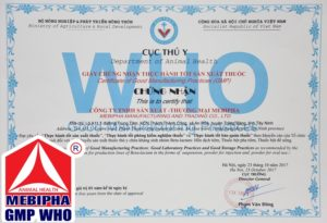 Chung nhan GMP - WHO Beta-lactam