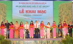 Khai mac hoi cho