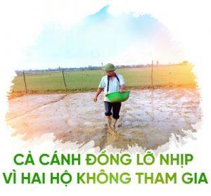hat-ngoc-titphu2