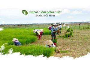 hat-ngoc-tren-canh-dong-chet-ky-tich-nguoi-nhat-cung-nga-mu-kham-phuc-3 (1)